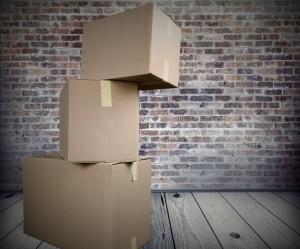 marder auf dem dachboden. Black Bedroom Furniture Sets. Home Design Ideas